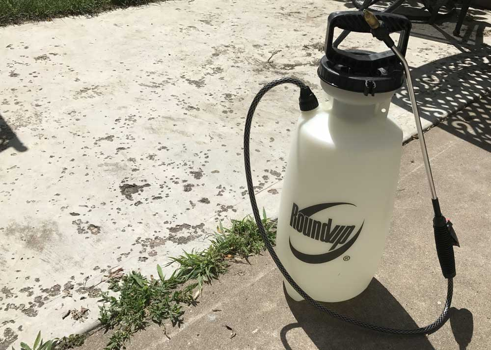 Chemical sprayer used to remove weeds from lawns and patios