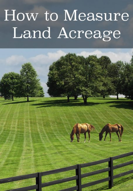 Share acreage calculator – find acres using a map or land dimensions