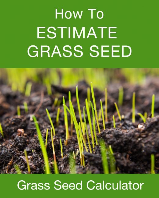 Learn how to estimate how much grass seed is needed for your lawn.