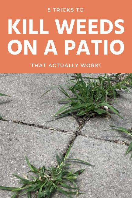 5 easy tricks to get rid of stubborn weeds on your patio that actually work!