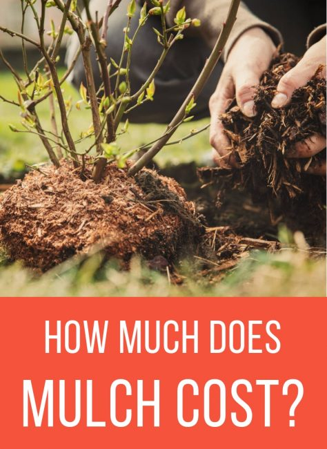 Learn how much different varieties of mulch cost