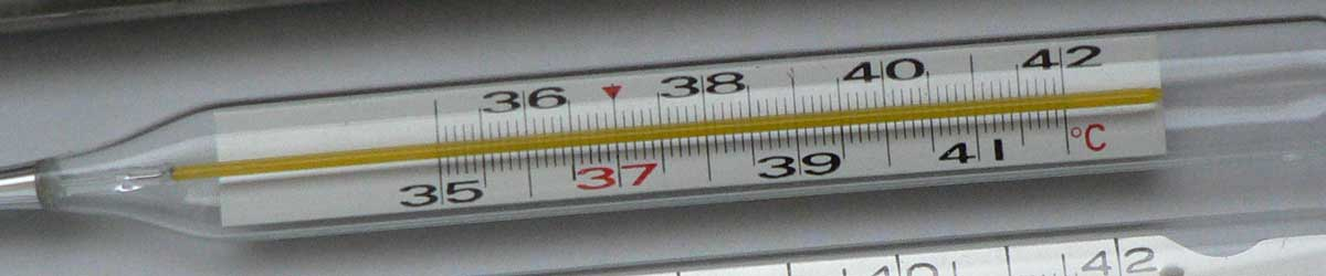 Thermometers measure temperature and come in many forms and sizes