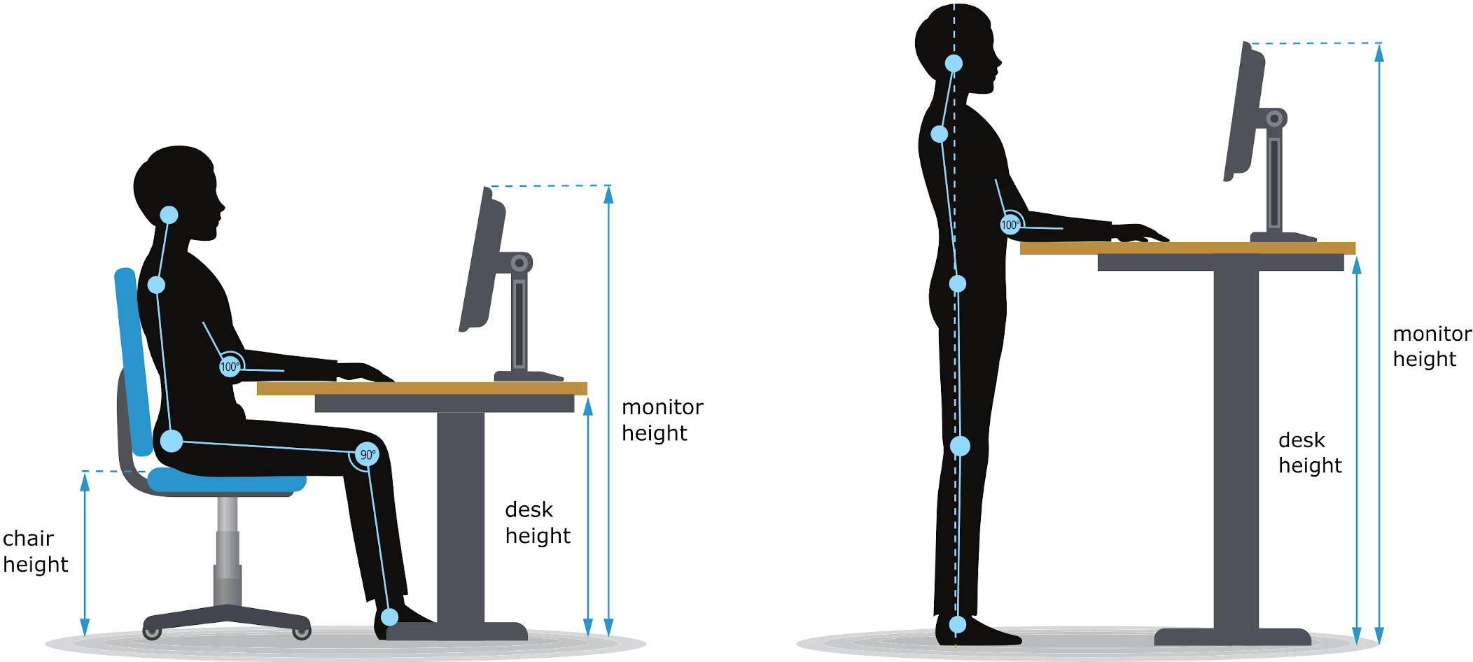 Diagram showing the key measurements to find the ergonomic desk height