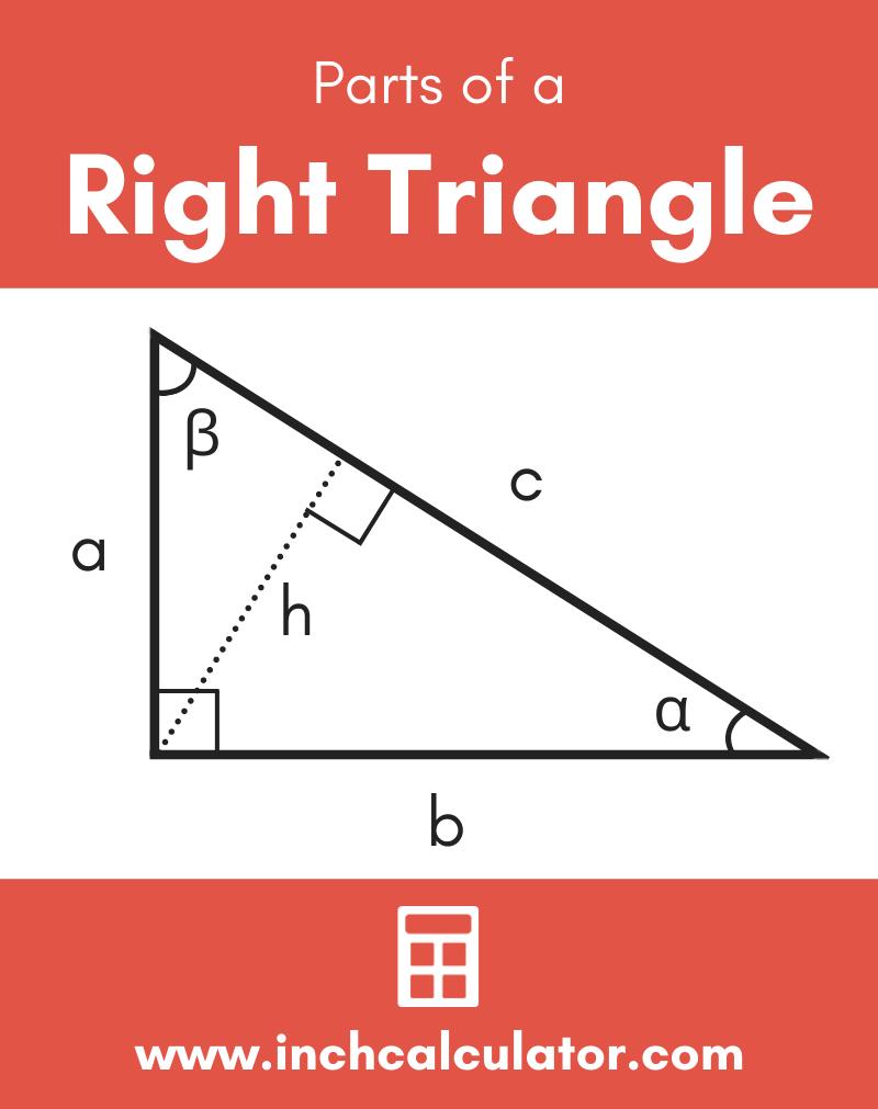 Share right triangle calculator