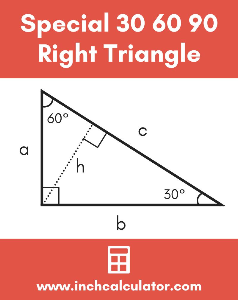 Share 30 60 90 special right triangle calculator