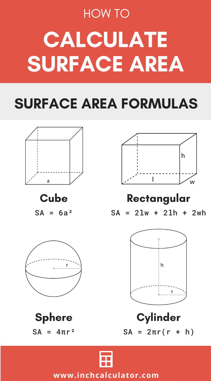 Share surface area calculator – surface area formulas