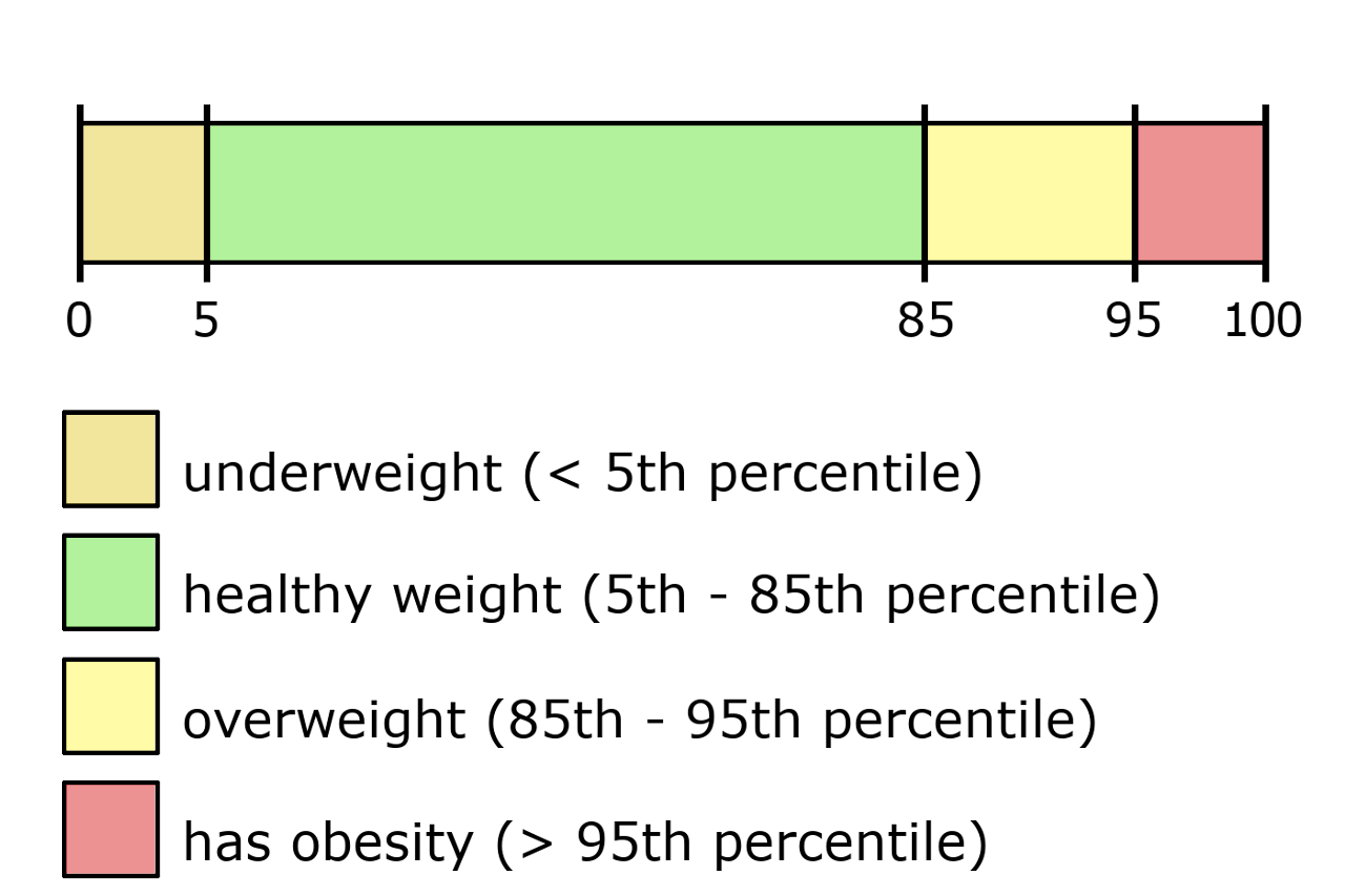 Scale showing range of child BMI percentiles and their BMI classifications.