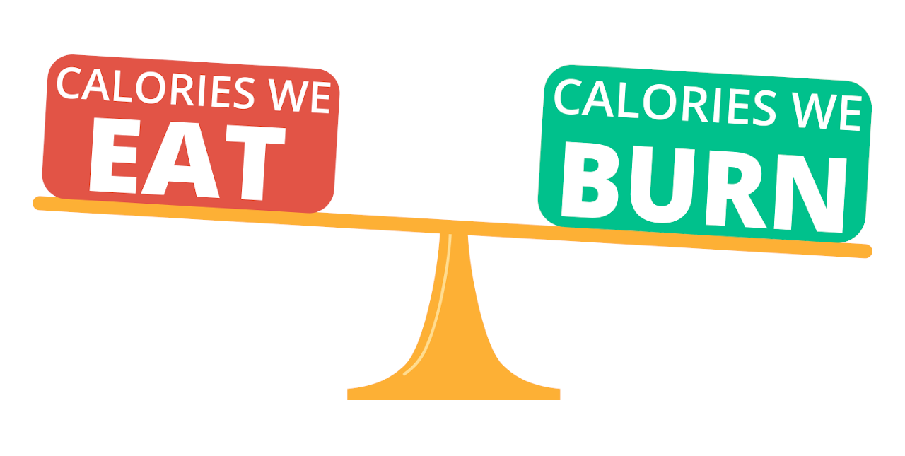 scale showing more calories burned than calorie intake to create a deficit
