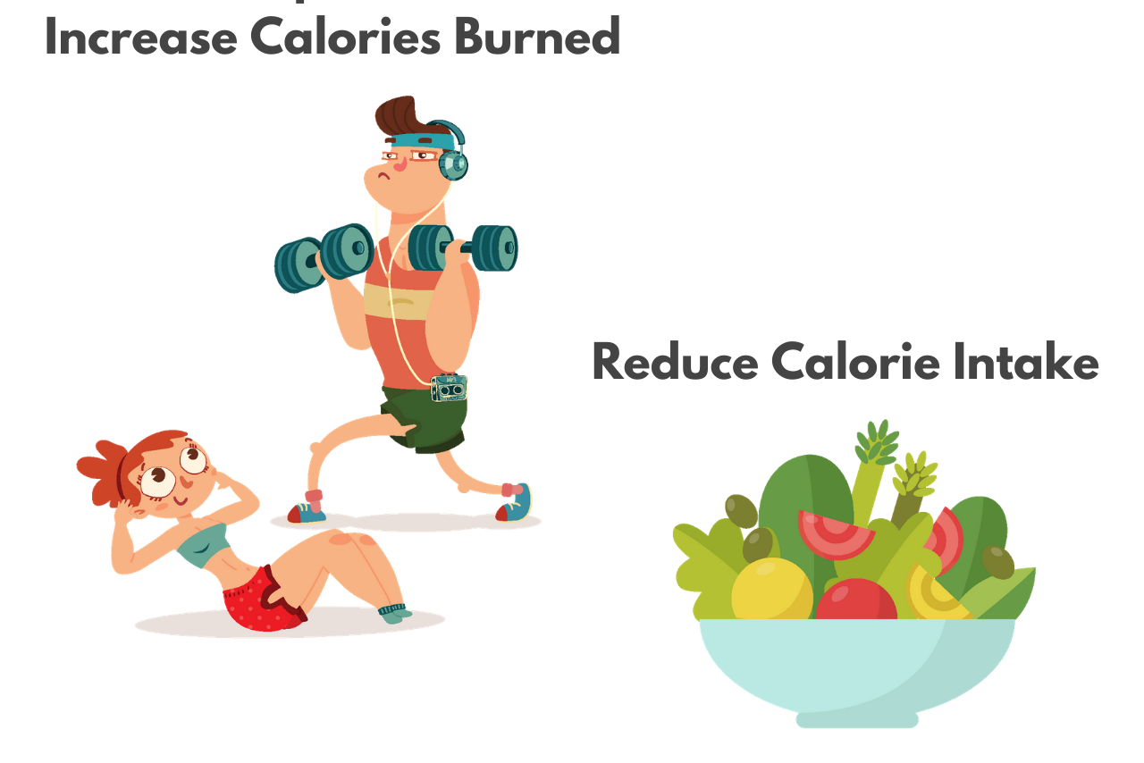 Weight Loss Calculator – Calculate a Calorie Deficit to Lose Weight