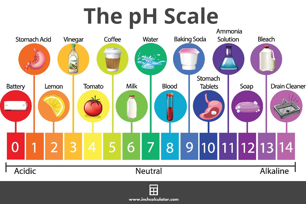pH Calculator