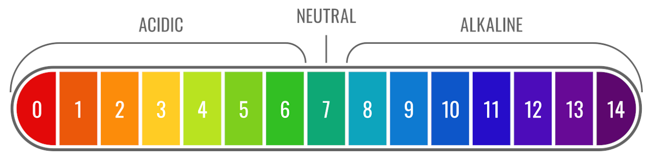 Graphic showing the pH result on the pH scale